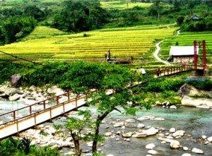 Valle de Muong Hoa Sapa