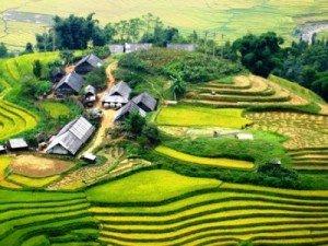 Giang Ta Chai - village des Hmong à Sapa