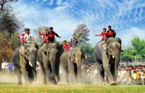 Elephant Vietnam