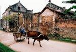 visiter le village de Duong Lam