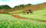 Visite Nord Vietnam