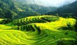 Visite Hoang Su Phi Ha Giang