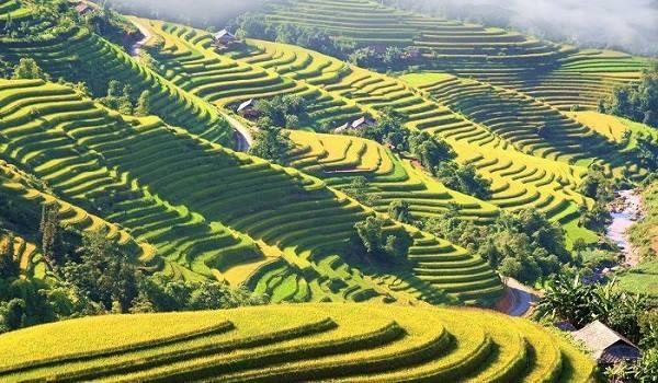 Voyage Hoang Su Phi à Ha Giang