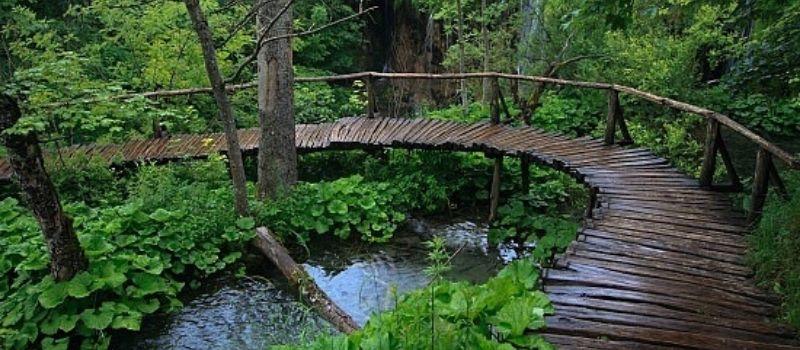 Parc national Ba Vi