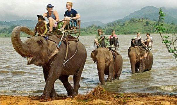 Balade à dos d'éléphant à Buôn Dôn Buôn Ma Thuôt