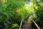 parc national Cat Tien