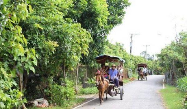 Visite l'îlot Thoi Son à Tien Giang