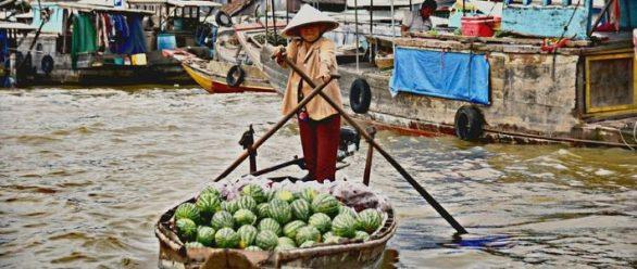 Visite delta du Mékong