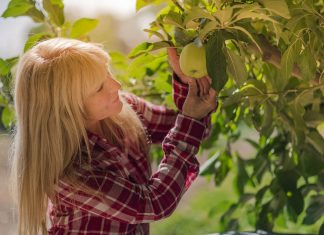 Image result for benefits of gardening