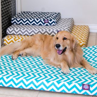 5 Steps to Clean A Large Dog Bed   Overstock com