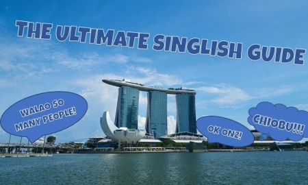 singlish guide singlish phrases singlish words