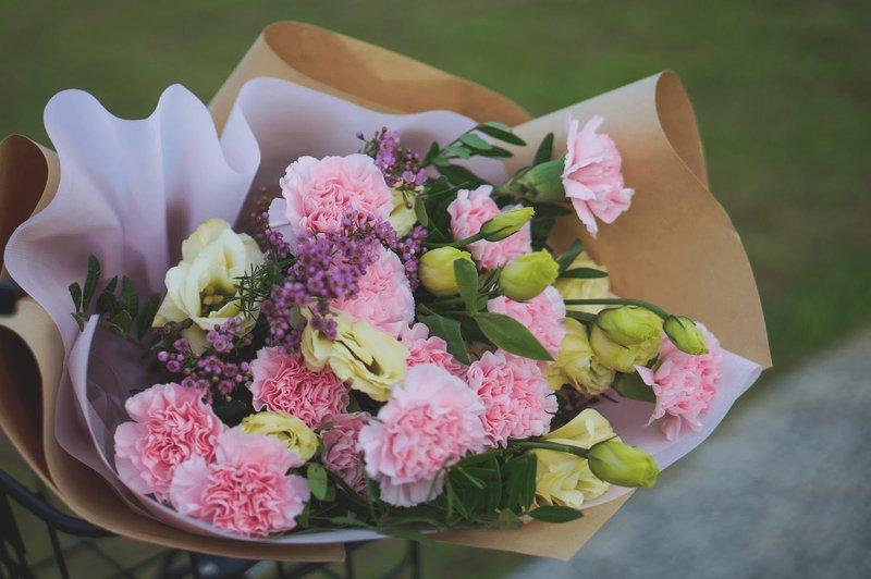 valentines-pink-carnations