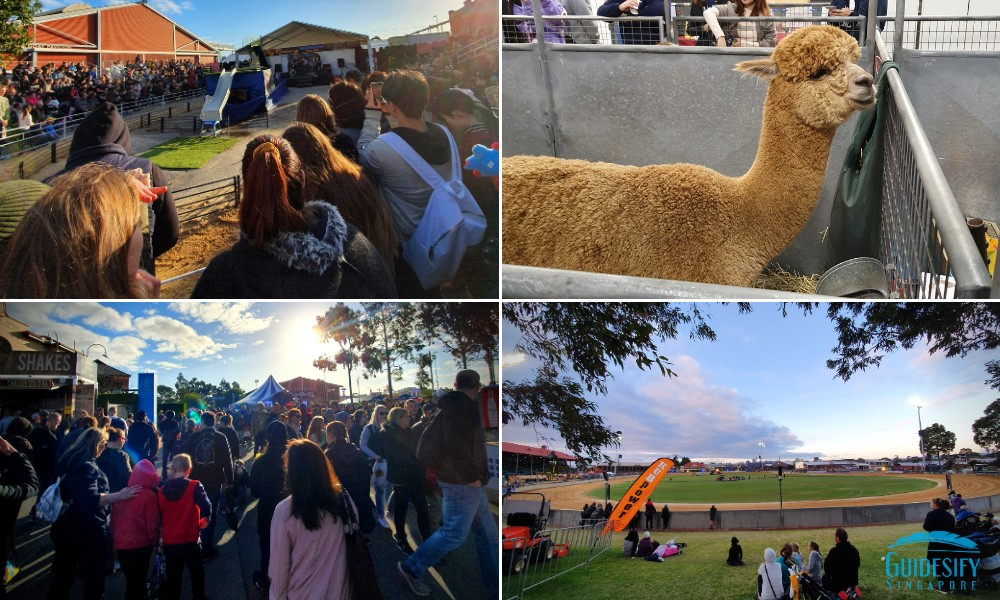 Royal Adelaide Show Collage