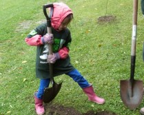The shovel is as big as little Victoria!