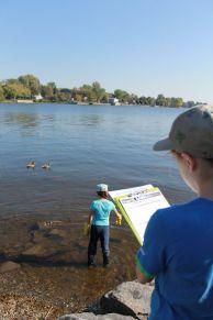 Shoreline Clean Up 4
