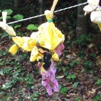 Tie-dye in process!