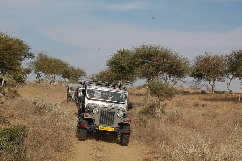 Jeep-Safari - Thar Desert in India