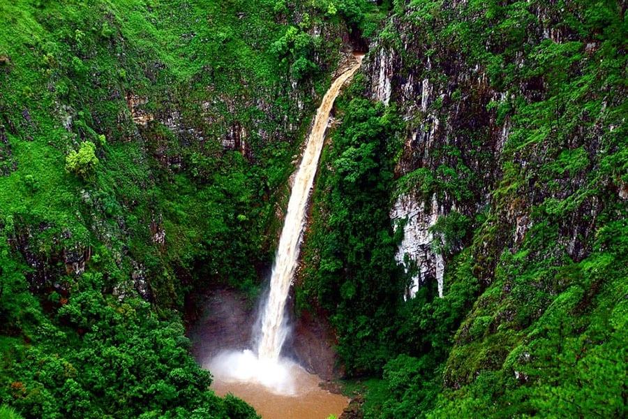 Shillong Sweet Falls - Cherry Blossom Festival