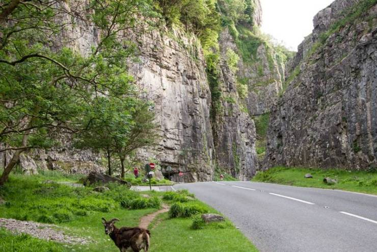 Top road trips for a UK car holiday