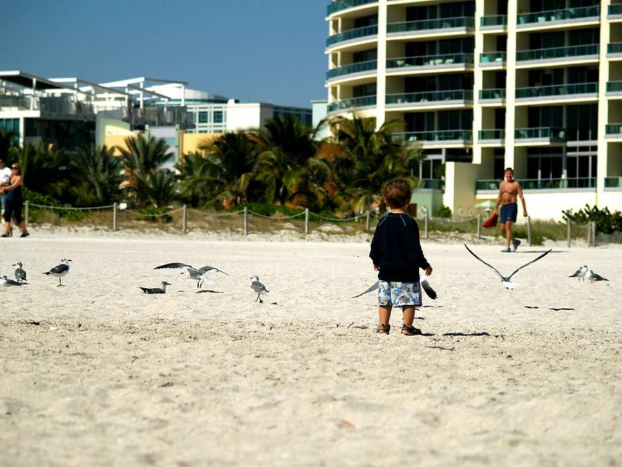 5 Exciting Things to Do With Your Kids in Miami