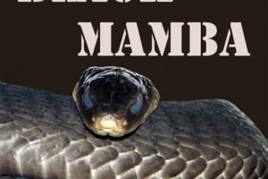 Black-Mamba-E-Liquid-Refill