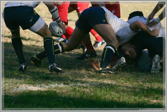 RUGBY_083