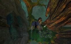 Ancient Tree HP Gliding