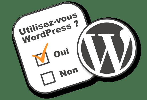 Comment insérer un sondage sur votre site WordPress ?