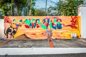 Street-Art_Guadeloupe-2019-16