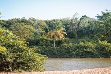nature_Guadeloupe-2019