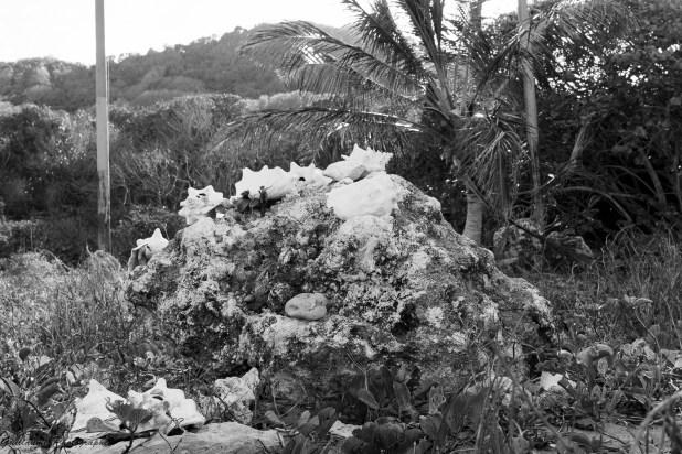 Guadeloupe-53