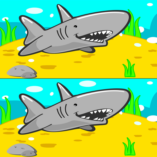 Spot the difference Shark
