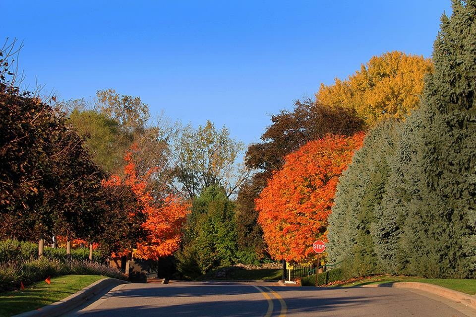 Fall at your old school…