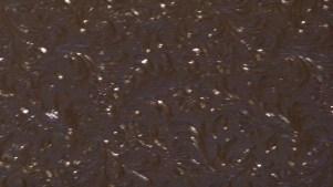 P1300237