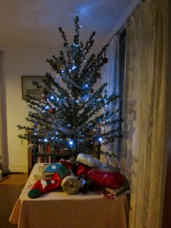 Our presents under the tree