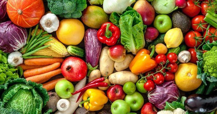 Cerebro: 9 Alimentos estrella que lo mantienen Súper en forma