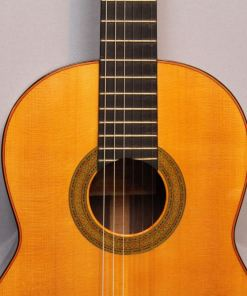 Flamenco-gitarren im American Guitar Shop 8