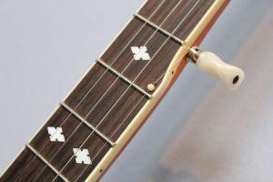Banjo für Bluegrass