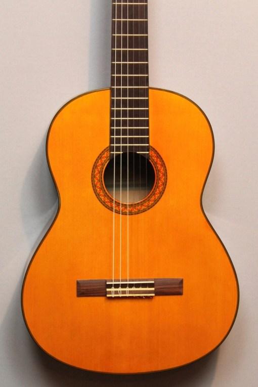 Nylonsaiten Gitarre2
