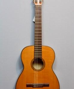 Konzertgitarre für Anfänger