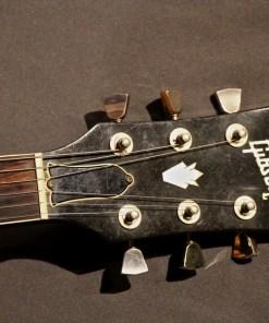 Gibson 335 1979 2