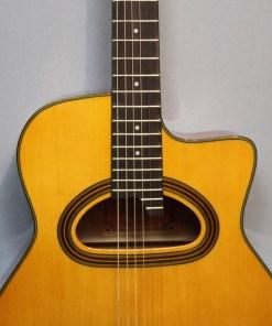 Richwood RM-140-NT Jazz Gitarre Selmer Style - Hot Club