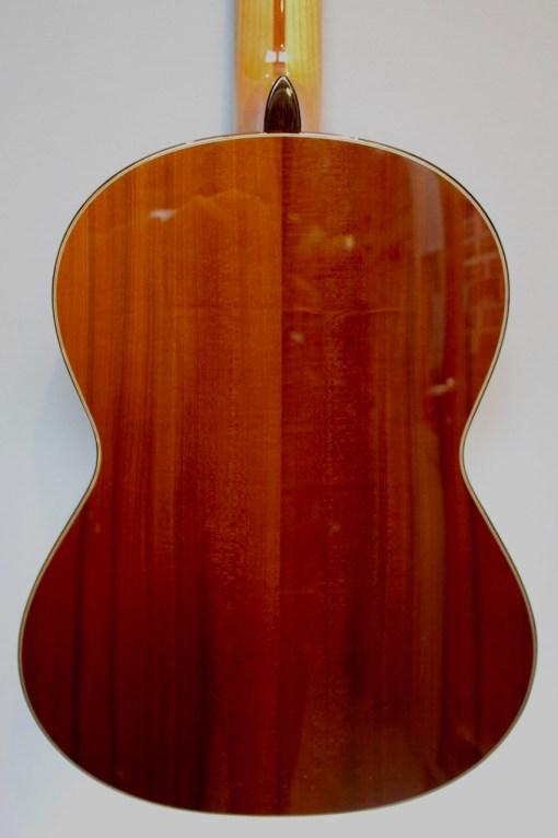 Hanika 58EF-N Konzertgitarre 1