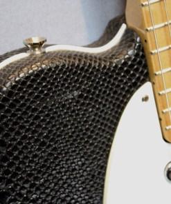 Berlin Custom Guitars Telley Snake 1