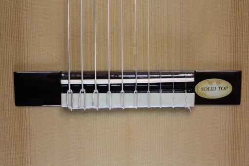 Salvador Cortez CS-60-10 10 saitige Classic Gitarre 1