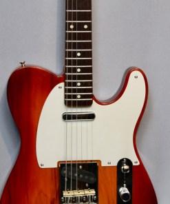 Berlin Custom Guitars Telley The Hel 1