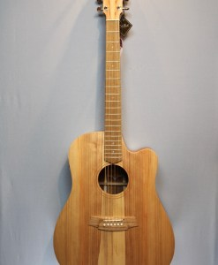 Cole Clark FL1ES BB Folk Gitarre