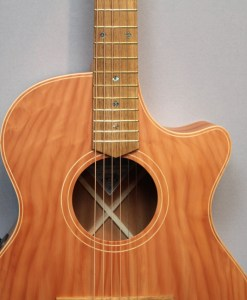 Cole Clark AN2EC-RDMAH Redwood Top with Mahogany Back and Sides Berlin