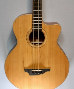 Stanford Big-Sur 4 fretted 3
