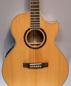 Cort NDX Baritongitarre 5